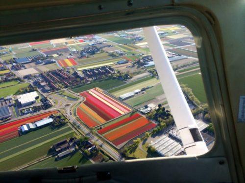 cadeaubonnen Bloembollenvlucht - Lion Air